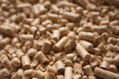 颗粒状木材